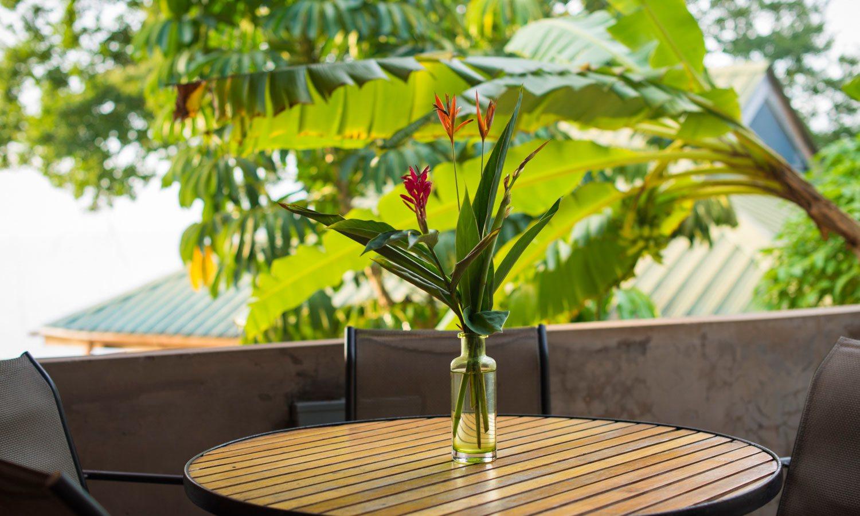 Ginger Lily Our Retreats Castara Retreats #B5BC0F